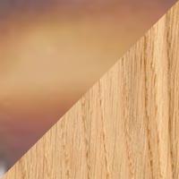 MILTON Optique Couleur Ecaille marron / Chene